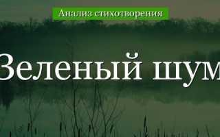 Анализ стихотворения Зеленый шум Некрасова