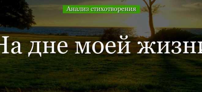 Анализ стихотворения На дне моей жизни Твардовского