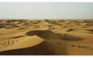 Пустыня – доклад сообщение (4 класс окружающий мир, 7 класс)