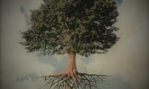 Басня Крылова Листы и корни