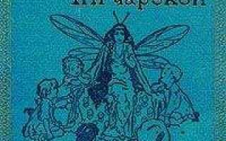Подарок феи – краткое содержание сказки Чарской