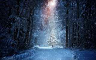 Сочинение на тему Прогулка по зимнему лесу