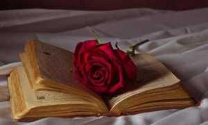 Что такое романтизм в литературе доклад сообщение