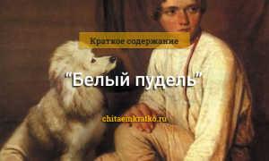 Белый пудель – краткое содержание рассказа Куприна