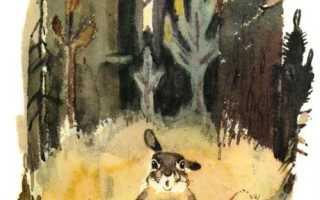 Сказка про храброго Зайца – краткое содержание сказки Мамин-Сибиряк