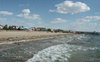 Каспийское море – доклад сообщение (4, 8 класс. География. Окружающий мир)