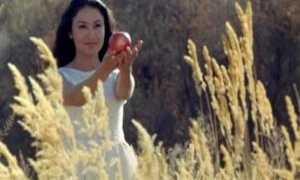 Красное яблоко – краткое содержание рассказа Айтматова