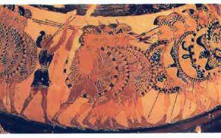 Спартанцы – сообщение доклад 5 класс история
