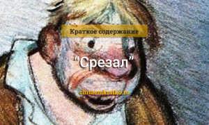 Срезал – краткое содержание рассказа Шукшина