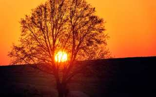 Сочинение на тему Осенний вечер