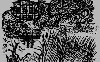 На графских развалинах – краткое содержание повести Гайдара
