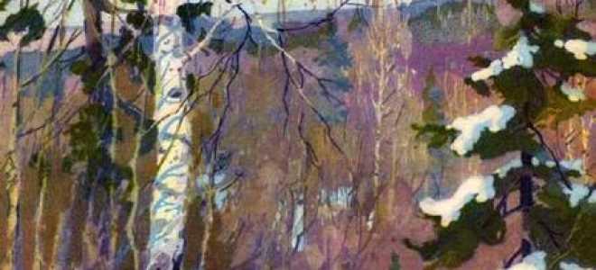 Четыре художника – краткое содержание рассказа Скребицкого