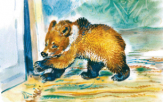 Медведко – краткое содержание рассказа Мамина-Сибиряка