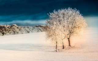 Сочинение Хорошо зимой 3 класс