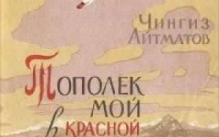Тополёк мой в красной косынке – краткое содержание рассказа Айтматова