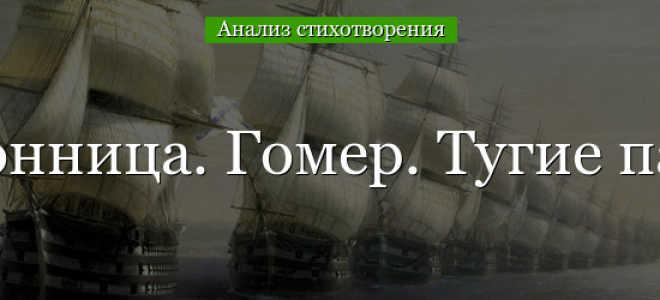 Анализ стихотворения Бессонница. Гомер. Тугие паруса Мандельштама