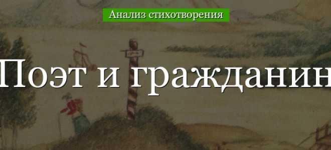 Анализ стихотворения Некрасова Поэт и гражданин