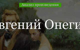 Жанр произведения Пушкина Евгений Онегин