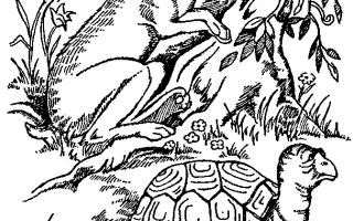 Басня Эзопа Осел в львиной шкуре