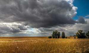 Боярин Орша – краткое содержание поэмы Лермонтов