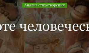 Анализ стихотворения Заболоцкого О красоте человеческих лиц