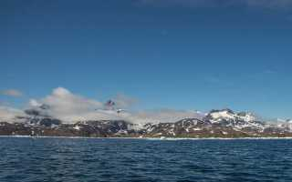Арктика – сообщение доклад (4, 5, 7, 8 класс окружающий мир)