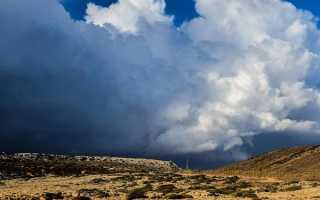 Анализ стихотворения Буря Некрасова