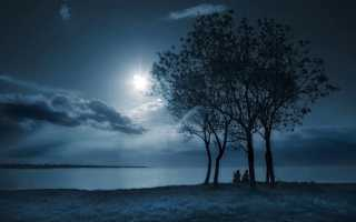 Анализ стихотворения Лунный свет Бальмонта