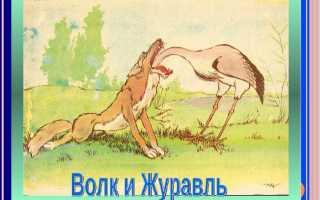 Волк и журавль – краткое содержание басни Крылова