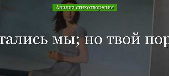 Анализ стихотворения Лермонтова Я не люблю тебя; страстей…