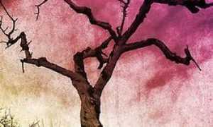 Анализ стихотворения Мир таинственный, мир мой древний Есенина