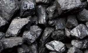 Как образовался каменный уголь – сообщение доклад