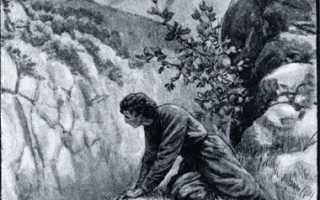 Мцыри – краткое содержание поэмы Лермонтова