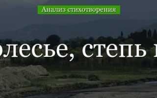Анализ стихотворения Есенина Мелколесье степь и дали 6 класс