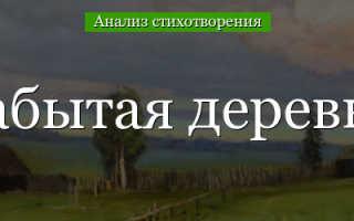 Анализ стихотворения Некрасова Забытая деревня