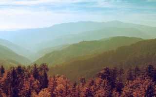 Лавка древностей – краткое содержание романа Диккенс