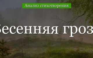 Анализ стихотворения Тютчева Весенняя гроза