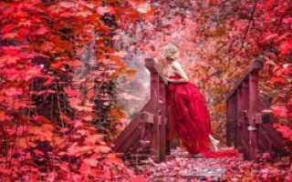Анализ стихотворения Не бродить не мять в кустах багряных Есенина