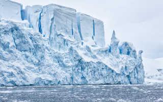 Сообщение про Антарктиду доклад