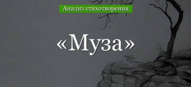 Анализ стихотворения Баратынского Пироскаф
