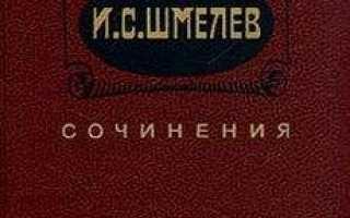 Неупиваемая чаша – краткое содержание рассказа Шмелёва