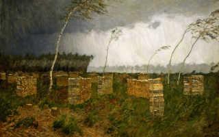 Анализ стихотворения Есенина Буря