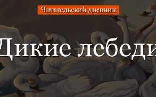 Дикие лебеди – краткое содержание с планом сказки Андерсена