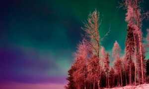 Ночь перед Рождеством – краткое содержание повести Гоголя