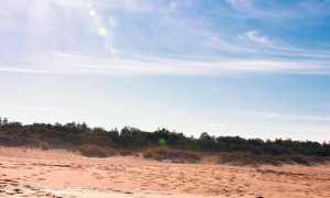 Песочный человек – краткое содержание рассказа Гофмана