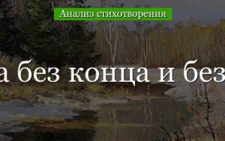 Анализ стихотворения Блока О, весна без конца и без краю