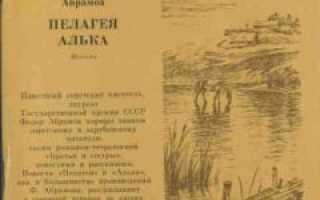 Алька – краткое содержание рассказа Абрамова