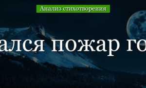 Анализ стихотворения Заметался пожар голубой Есенин