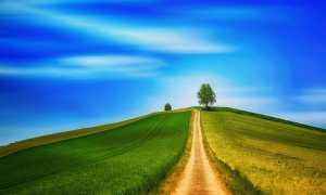 Как вы понимаете слова Конёнкова: «Мечта всегда крылата — она обгоняет время»? Сочинение