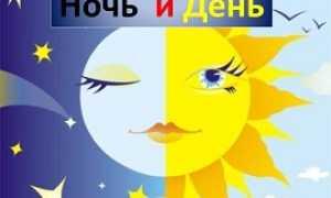 Анализ стихотворения Тютчева День и ночь